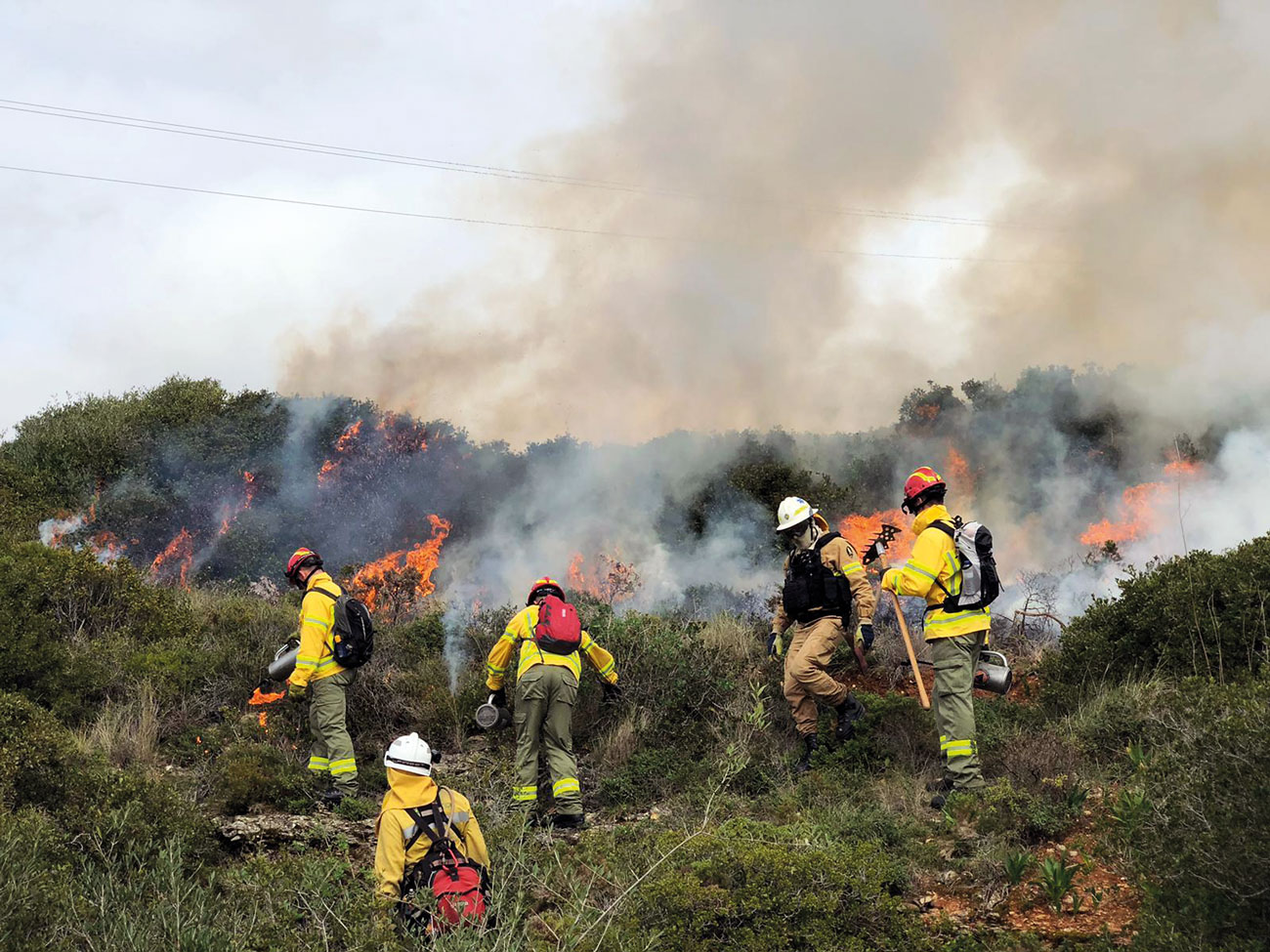 The wildfire burn team using fire and hand tools to construct control lines to stop fire spread.